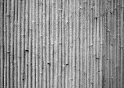 brahmsstrasse-bambus-sichtbeton